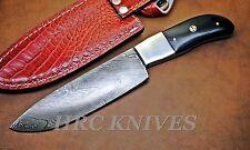 "DB5 ~ 10"" CUSTOM HRC DAMASCUS CHEF KITCHEN KNIFE WITH BUFFALO HORN HANDLE - USA"
