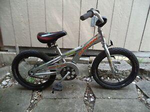 Schwinn Gremlin Bike