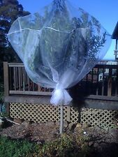 Fruit Tree Net 2m cube tent, protect from pests inc fruit fly/birds/bats/possums