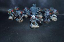 Warhammer 40k Space Marine Wolves Wolf Grey Hunters Painted
