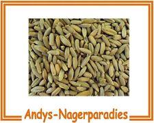 5kg Roggen Getreide für Hühner Futtermittel auch für Körnerkissen