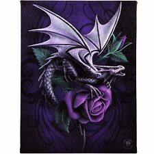 Dragon Beauty Anne Stokes Wall Plaque Gothic Rose Fantasy Art Canvas Picture