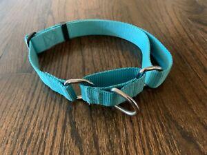 Blueberry Pet Dog Martingale Collar Safety Training Turquoise Size Large L Slip