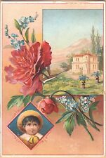 Embossed Victorian Trade Card-G E Bryant-Knox, ME-Child-Flowers-Landscape Scene