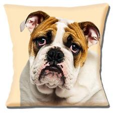 "ENGLISH BULLDOG YOUNG ADULT CLOSE UP PHOTO PRINT Cream 16"" Pillow Cushion Cover"