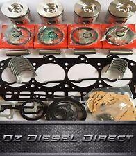 V2203-M-DI New Overhaul Rebuild kit for Kubota V2203-M-DI bobcat Scat Track
