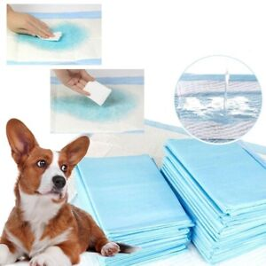 30Pcs Pet Disposable Dog Cat Puppy Diapers Indoor Toilet Training Absorption Pad