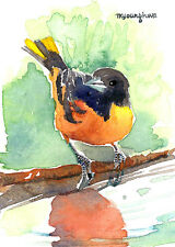 ACEO Limited Edition- Water's edge, Baltimore oriole, Gift for her, Home deco