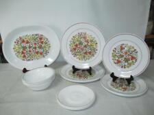 Vintage Corning Corelle Indian Summer 17 Piece Dinnerware