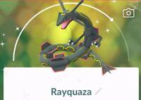 Pokemon go shiny Rayquaza !!