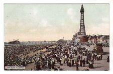 Bank Holiday At Blackpool - Photo Postcard c1905