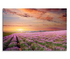 120x80cm Leinwandbild auf Keilrahmen Blumenwiese Lavendel Sonnenuntergang