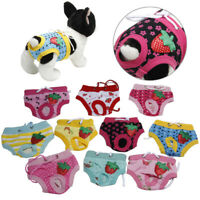HB- Cute Pet Dog Puppy Diaper Pants Physiological Sanitary Short Panty Underwear