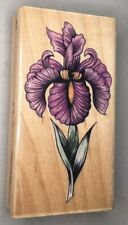 Wood Mounted Rubber Art Stamp SN IRIS Rubber Stampede 3625F Suzanne Nicoll EUC