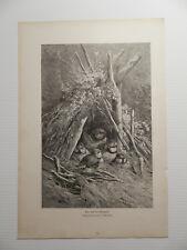 Das Nest der Blaumeise Vogel   Holzstich 1882 n. Originalzeichnung J. Giacomelli