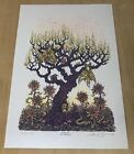 Marq Spusta Luminous Life Poster signed and numbered Ice Variant Soundgarden