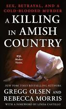 A Killing in Amish Country: Sex, Betrayal, and a Cold-Blooded Murder (Paperback