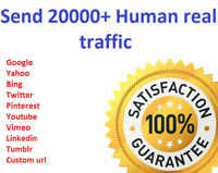 20,000  Real Visitors and SEO Submit Website Web Advertising - Google SEO