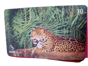 Animal phonecard. Panthera Onca. A carnivore. Found in the Americas. Weight 150k