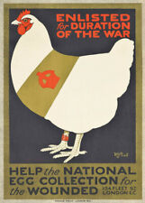 HELP THE NATIONAL EGG COLLECTION British WW1 Propaganda Poster