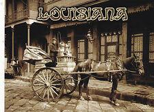 "*Postcard-""Horse/Drawn Milk Cart"" @ New Orleans, 1903  (B327)"