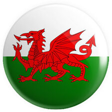 Wales Welsh Flag Red Dragon BUTTON PIN BADGE 25mm 1 INCH