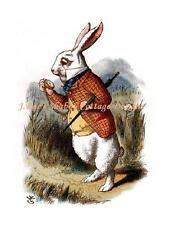 Alice In Wonderland White Rabbit I'm Late  I'm Late 5x7 Fabric Block