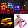 PET DOG CAT SAFETY NYLON LED FLASHING LIGHT HARNESS LED LEASH ROPE BELT COLLAR