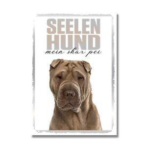 Shar Pei Seelenhund Dog Schild Spruch Türschild Hundeschild Warnschild Soulmate