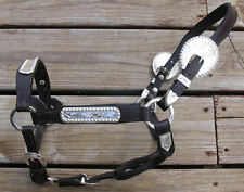 Dark Oil Yearling Show Halter - Congress Cut Silver - Matching Lead Shank