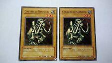 Lot 2 Cartes Yu Gi Oh Cimetière De Mammouth MDM-F104