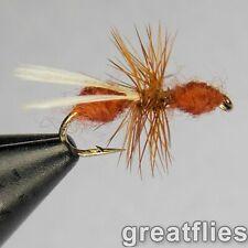 1 dozen (12) - Flying Red Ant