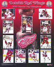 Detroit Red Wings 2002 Stanley Cup Championship Picture Plaque