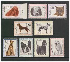 POLAND POLSKA 1963 DOGS SET OF 9 MINT NEVER HINGED BULLDOG BOXER SPANIEL POODLE