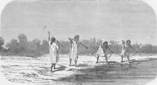 BOLIVIA. Antis Indians shooting fish 1890 old antique vintage print picture
