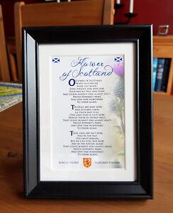 Flower of Scotland - framed verse