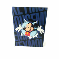 Vintage Disney Holson Mickey Mouse Photo Album 36 pages for 72 photographs
