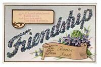 ca1910 Embossed Friendship Greetings Postcard Purple Flowers