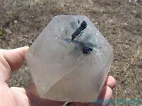 Gemmy Blue Tourmaline Crystals in Huge Clear Quartz Crystal Point____BRAZIL
