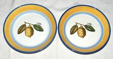 "Villeroy & Boch Amarillo TWO 7.3/4"" Shallow Bowls"