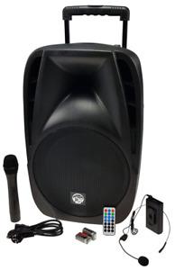 Mobile PA Anlage Beschallungsanlage Musikbox 700 Watt 12 Zoll USB SD Bluetooth