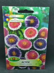 Asters Two colours Unusual Cut flowers Moonshine 150 seeds Mix