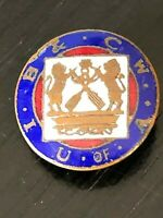 Collectible Vintage U of A IB CW Metal Screw Back Pinback Lapel Pin Hat Pin