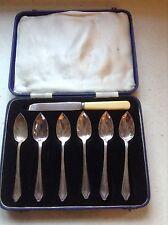Vintage Set 6 EPNS Grapefruit Spoons and Knife in Case