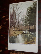 ROSLINDALE MA - SCARCE EARLY POSTCARD - THE GORGE ABOVE WILLIAMS POND