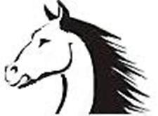 Tierpsychologie PFERD Verhaltenstherapie Pferdepsychologie Ausbildung Fernlehrga