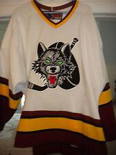 2004-2005 AHL CHICAGO WOLVES PLAYOFF JOE CORVO GAME WORN HOCKEY JERSEY TEAM LOA