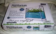 Globus Plantarium Super Forest Educational Kit - Ants & Plants live together
