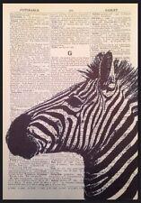 ZEBRA dizionario vintage stampa pagina WALL ART PICTURE ZOO SAFARI neri di origine animale