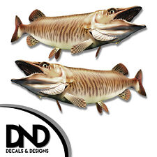 """Tiger Musky - Fish Decal Fishing Tackle Box Bumper Sticker """"5in SET"""" F-0920 D&"""